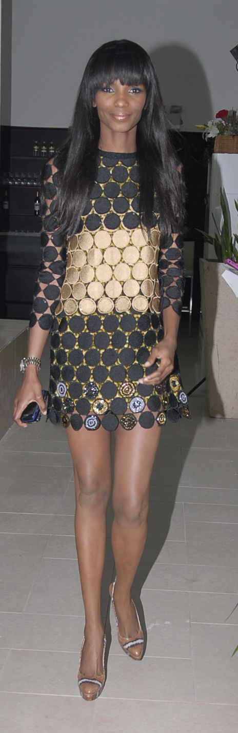 Agbani Darego at the Stylogenic Presentation