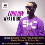 New Music: LayLow – What It Do Ft Seriki, Phenom,Yung6ix, Olamide, Sossick, Jesse Jagz, Phyno,Liu T  & Buckwylla