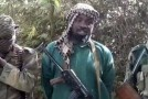 News: Wanted! US offers $23m as reward for Boko Haram Boss, Shekau