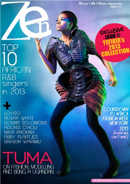 Zen June 2013 online cover 41