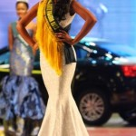Amber Rose, Boris Kodjoe, Dbanj, Segun Arinze, Joseph Benjamin & Others At The Miss Earth Nigeria 2013 Finale