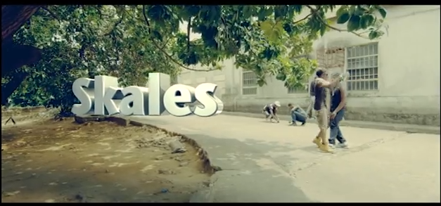 skales take care of me
